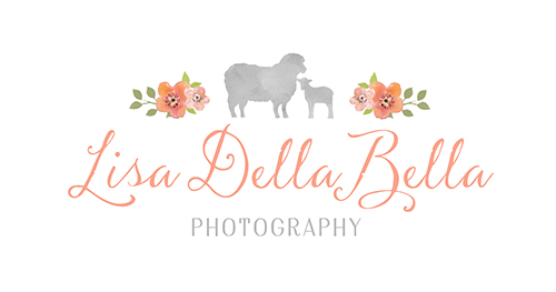 Lisa DellaBella Photography Palm Beach County Newborn and Maternity Photographer logo